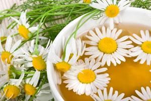 Польза чая из ромашки для нервной системы