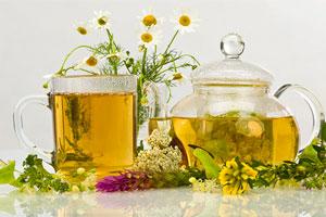 Рецепты приготовления чая из ромашки