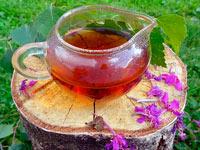 как заготовить иван-чай самостоятельно в домашних условиях