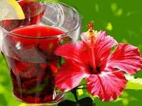 полезные свойства чая каркаде, как правильно заваривать, противопоказания