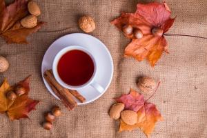применение чая каркаде для лечения и профилактики болезней
