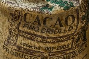 лучшие производители какао