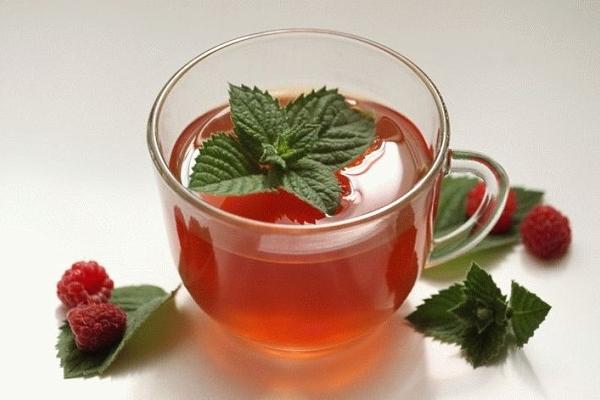 Чай из листьев, веток и ягод малины: как собрать, засушить и приготовить напиток