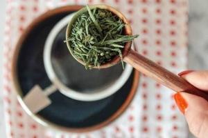 Полезные свойства чая сентя