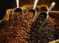 Сколько сортов кофе существуют в мире: список с названиями
