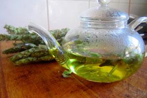 Лечебные свойства мурсальского чая