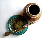 Подробнее о чае мате, его пользе и вреде