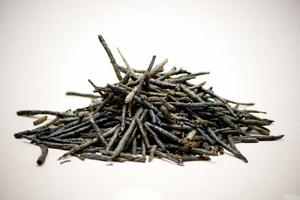 Полезные свойства китайского чая кудин, противопоказания