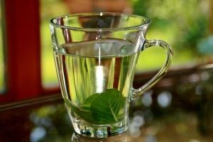 противопоказания чая с мятой