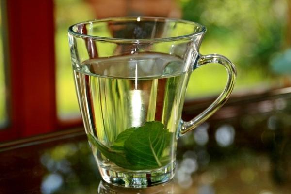 Чай с мятой и можжевельником для беременных