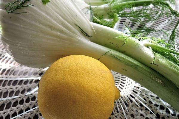 Полезные свойства чая с фенхелем, рецепты приготовления, способы применения