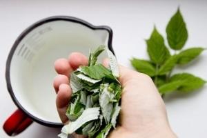 Рецепты приготовления ферментированного чая из сборов
