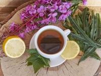 как собирать и сушить иван-чай и делать из него чай