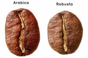 По виду кофейных зерен