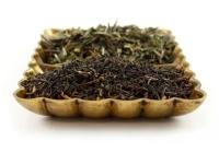 чем отличается зеленый чай от черного