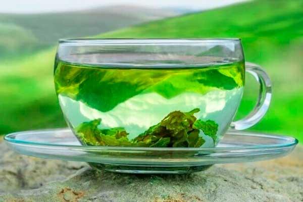 Сколько в день можно пить зеленый чай без вреда здоровью?